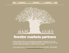 Proposed design for Frontier Markets Partners